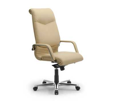 executive-office-armchairs-elegance.jpg